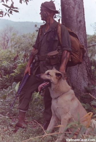 Vietnam War Photos - SEALs